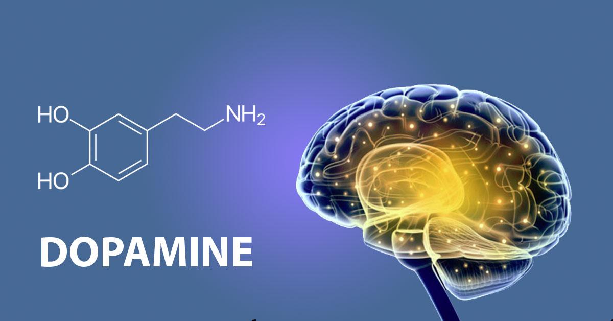 डोपामाइन (DOPAMINE) चे व्यसन